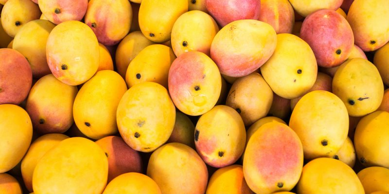 spotlight mangoes