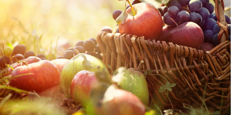 stanthorpe Apple & Grape Festiva