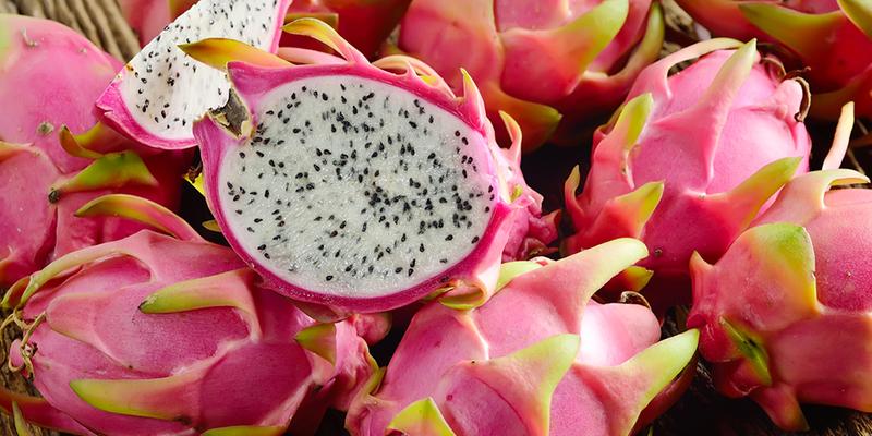Spotlight on Dragon Fruit