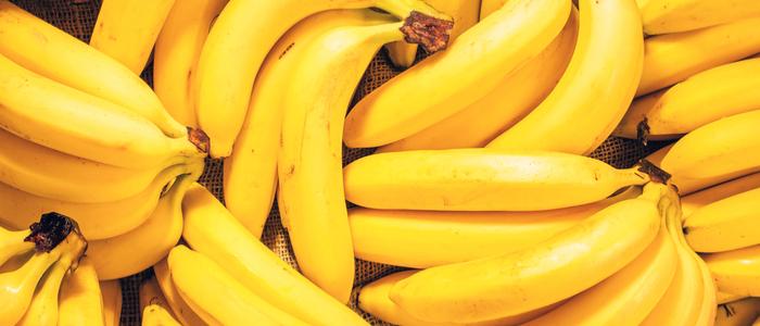 Spotlight on Bananas